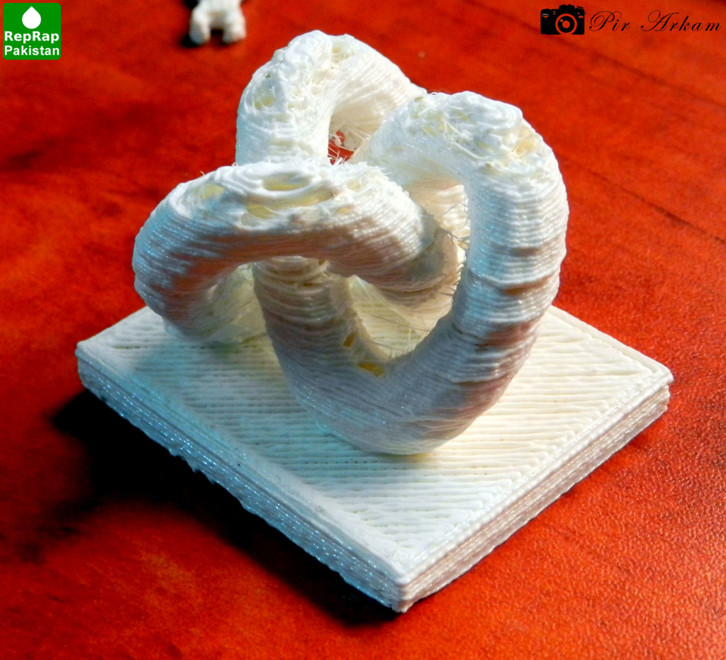 3D Knot Printed by RepRap 3D Printer in Pakistan